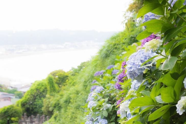 2017/5/7 家づくり相談会【家相・地相編】